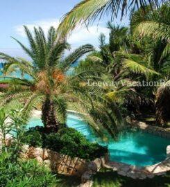 Indigo – Anguilla