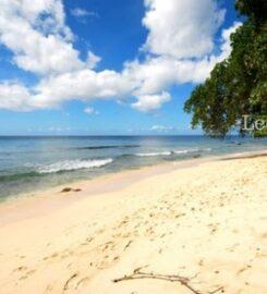 Mahogany Bay – Fathom's End