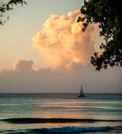 Merlin Bay – Hibiscus